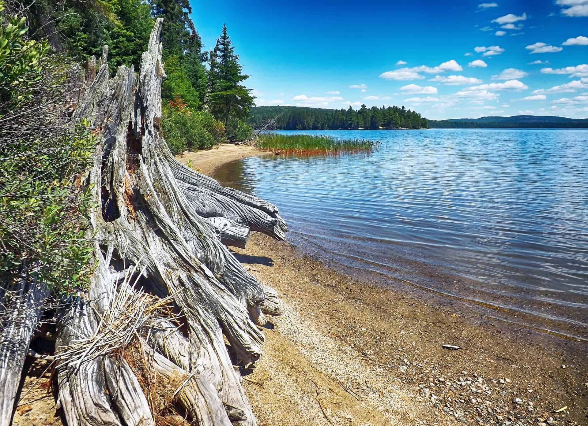 Algonkin Provincial Park